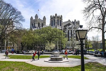 An image of the campus of New York College